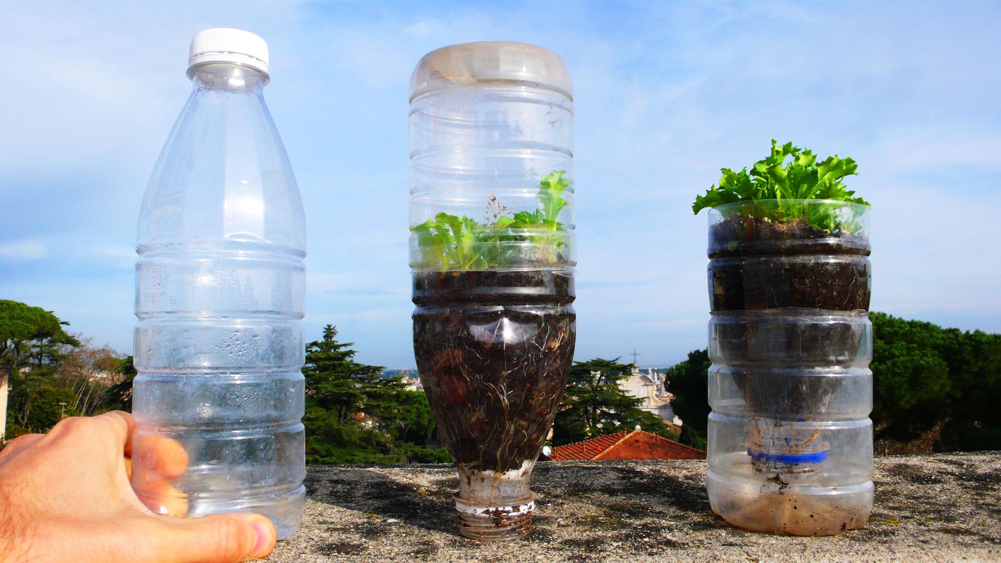 Муравей из пластиковой бутылки, бабочка-коробочка - LiveInternet 97
