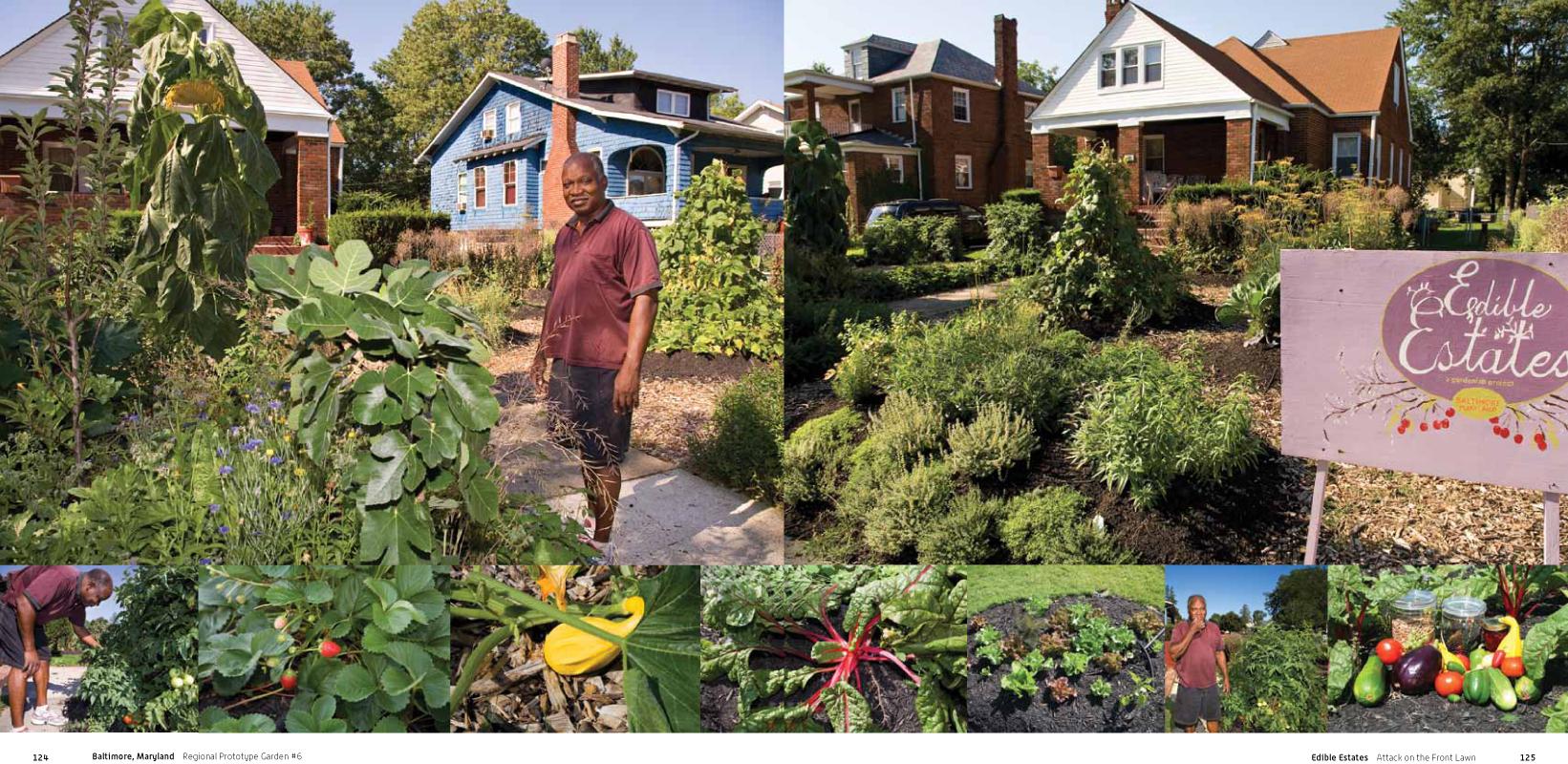 front yard edible garden ideas edible estates attack on the
