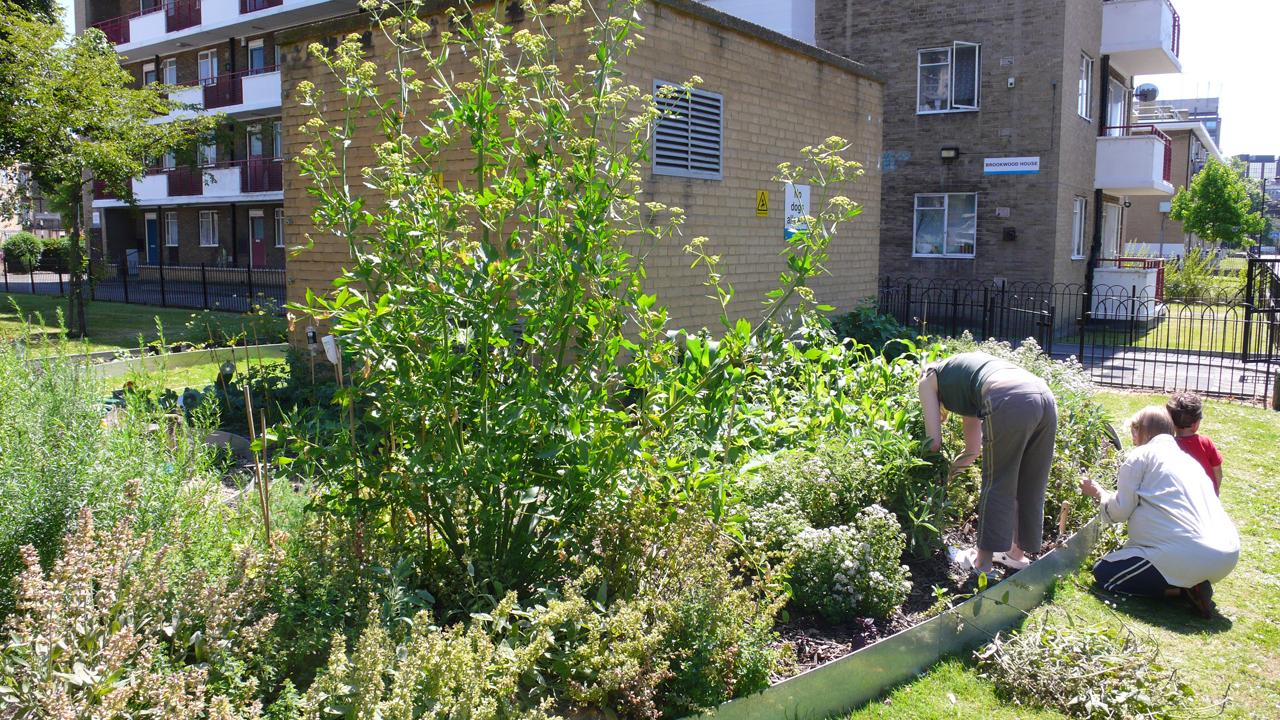 Les jardins urbains for Jardin urbain permaculture