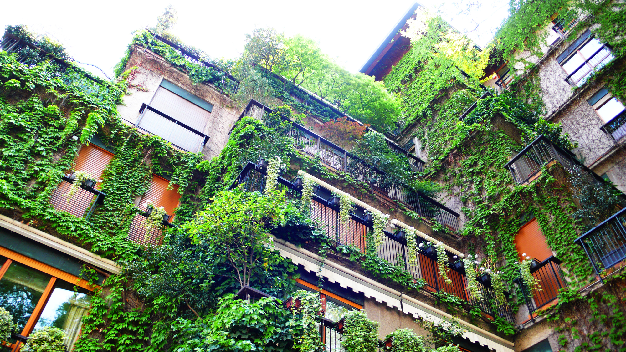 Green Milan Apartments