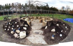 planting the Foraging Circle at the Minneapolis Sculpture Garden