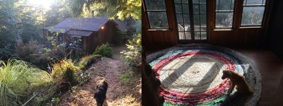 "the old doggies inspect their new digs: cabin #7 now called ""Cedar,"" at the bottom of the path"