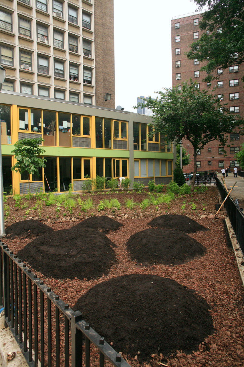 gardenlab / Lenape Edible Estate: Manhattan