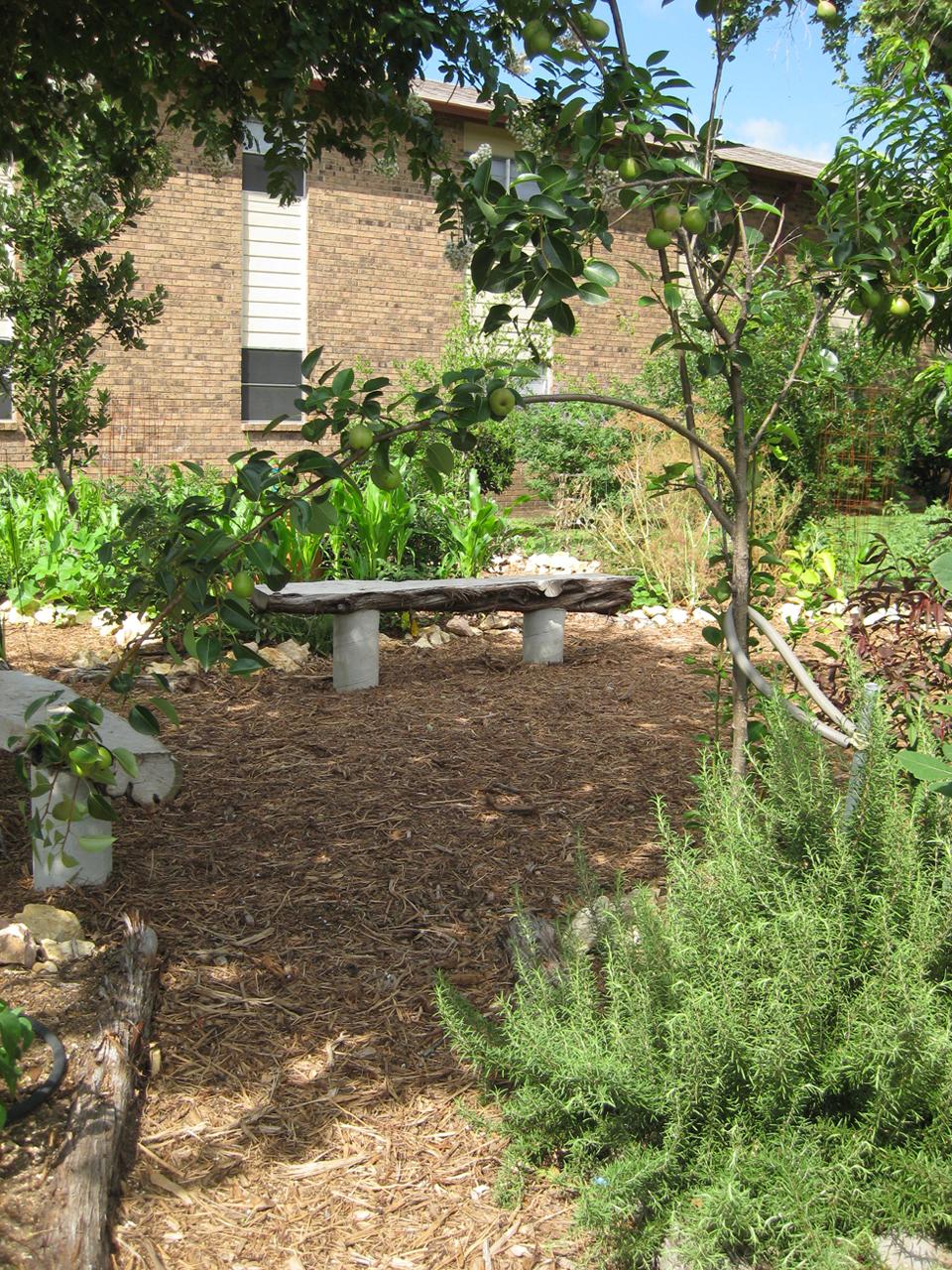 edible estates #5: AUSTIN, TX / THE GARDEN
